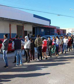 Taxa de desemprego deve continuar caindo, diz estudo