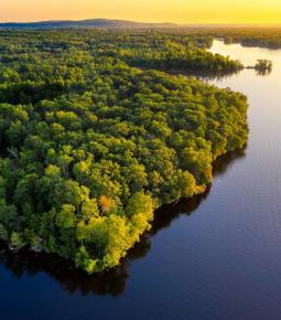 Amazônia Legal: Justiça autoriza emprego da Força Nacional